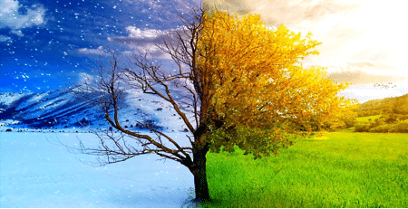 Changing Seasons - Nanny & Butler Blog